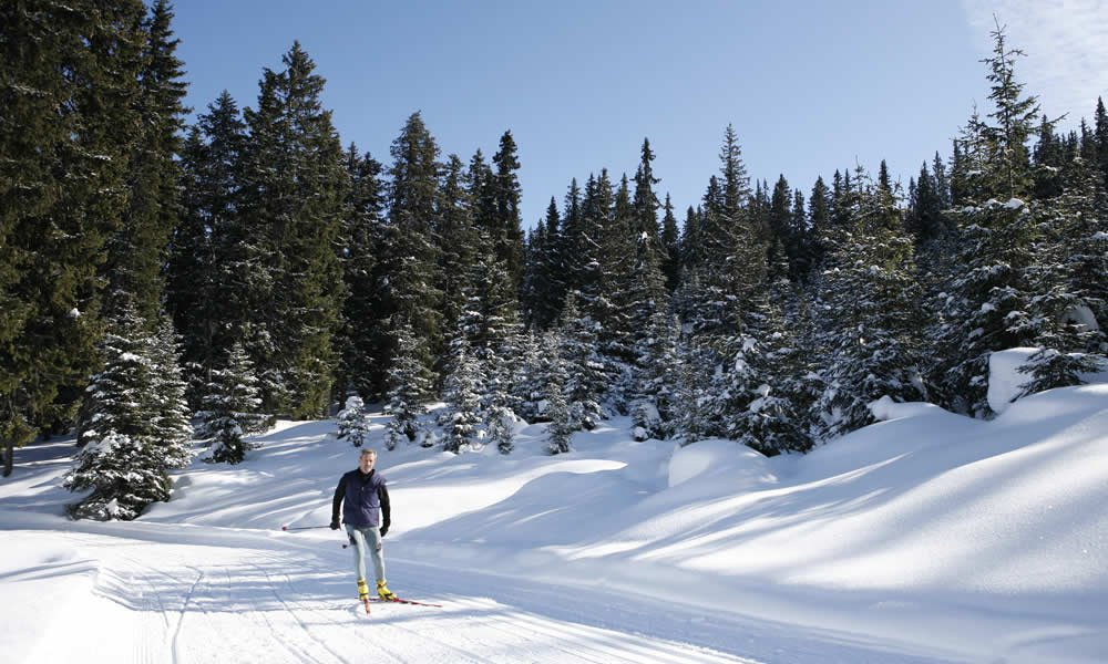 Cross-country skiing Ridnaun/Ratschings South Tyrol