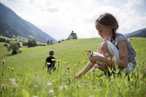 Kinderferien auf dem Bauernhof 1