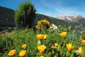Vacanze a Ridanna - Racines 1
